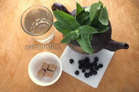 Подготовьте необходимые ингредиенты:  сушёную вишню , кипяток, свежую мяту, тростниковый сахар.