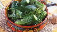 Фото рецепта Малосольные корнишоны с пряными травами