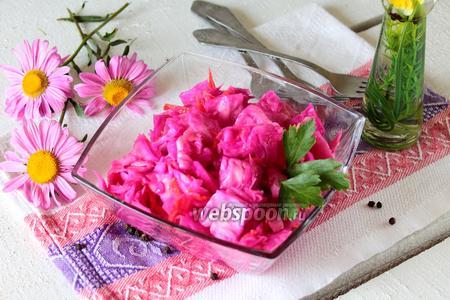 Фото рецепта Маринованная капуста со свёклой быстрого приготовления