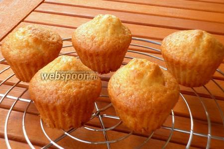 Готовые капкейки остудить на решётке, посыпать сахарной пудрой.