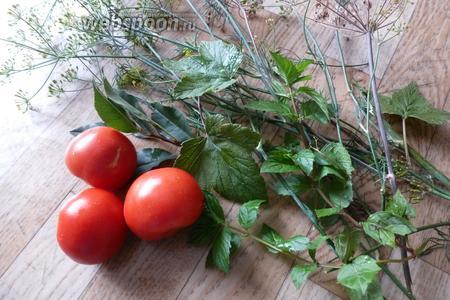 Подготовим помидоры и пряную зелень, листья. Хорошо вымоем. Помидоры берём, по возможности, небольшие и одинакового размера.