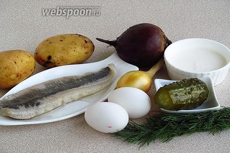 Для приготовления салата нужно взять филе солёной сельди, свёклу, картофель, маринованный огурец, сметану, куриные яйца и зелень укропа.