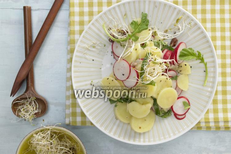 Фото Картофельный салат с редисом