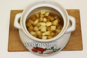 Картофель очищаем от кожицы, промоем, нарезаем средними кубиками. Помещаем в кастрюлю и наливаем бульон. Отправляем на огонь. Доводим до кипения.