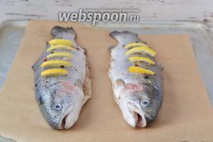 Положить тушки рыбы на противень, застеленный бумагой, и запекать в духовом шкафу при температуре 180-190°С 25-35 минут. Время запекания зависит от размера рыбы.