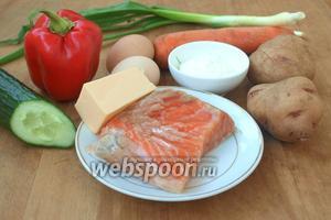 Для салата нам понадобится сёмга солёная (у меня домашняя), картофель, морковь, сладкий перец, свежий огурец, яйца, зелёный лук, твёрдый сыр и майонез.