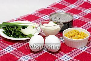 Для приготовления салата возьмите баночку филе тунца в масле, сладкую кукурузу, вареные яйца (их количество можно увеличить по желанию), свежую петрушку, зелёный и репчатый лук (последнего хватит и 1/4), майонез.