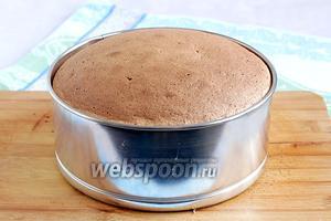 Готовый бисквит достать из духовки и остудить на перевернутых стаканах до полного остывания. Затем вырезать бисквит из формы.