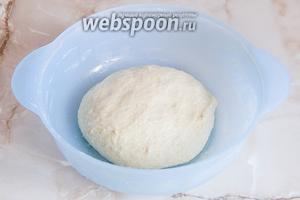 Вот такой вот колобочек у вас должен получиться — он очень нежный. Дополнительно можете подсыпать немного муки, но если только у вас тесто не собирается в шар. Отправляем тесто на расстойку в тепло на 1 час.