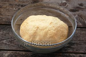 Смазать миску подсолнечным маслом. Остальное масло вмешать в тесто. Выложить тесто в миску, накрыть полотенцем и оставить в тёплом месте на 1 час 20 минут для брожения.