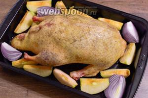 Рядом с уткой разложите оставшиеся яблоки и порезанный на небольшие дольки красный лук.