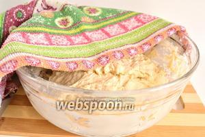 Накрыть тесто и оставить подниматься. Я предпочитаю накрывать плёнкой. Когда тесто по объёму станет не менее чем в 2 раза больше, можно готовить хачапури.