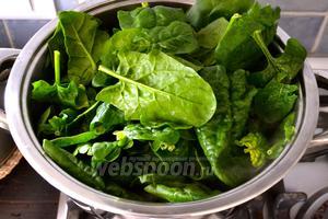 Шпинат вымыть. Не стряхивая сильно воду с листьев, положить шпинат в большую кастрюлю и поставить на огонь. Накрыть крышкой (можно влить 0,5 стакана воды).