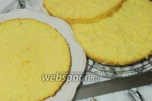 Бисквит очень острым ножом, для тортов или хлеба, с зубцами, разрезаем на 3 одинаковые части.