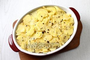 Затем уложить в форму оставшийся картофель. Снова посолить и посыпать специями.