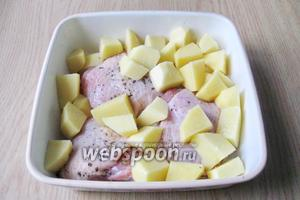 Картофель кладем к курице, немного солим. Наливаем в форму  150-200 мл воды или бульона и ставим в духовку, разогретую до 175-180 градусов на 20-25 минут.