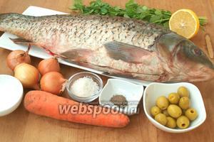 Для приготовления нам понадобится карп, лук репчатый, морковь, оливки, лимон, крупная морская соль, приправа для рыбы, петрушка и сметана. Карпа следует почистить, удалить внутренности и вырезать жабры. Мне всегда достаётся уже чищенная рыба, ну а жабры и внутренности это уже моя работа. Карп у меня в этот раз солидный — 1,5 кг в очищенном виде. Оливки я использовала без косточек, но в данном варианте это не принципиально: подойдут как с косточкой, так и без.