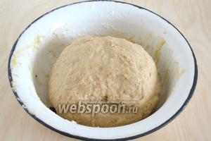 Замесите эластичное тесто. Оно немного будет липнуть к рукам — это нормально. Когда тесто поднимется, оно   перестанет липнуть. Количество муки может варьировать в пределах 470-520 г, в зависимости от влажности муки и размера яиц.