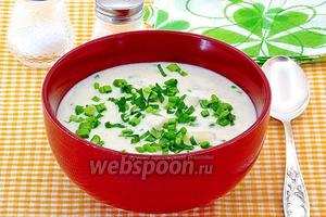 Сырно-молочный суп с макаронами