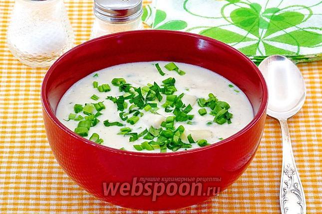 Фото Сырно-молочный суп с макаронами