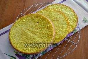 Подготовим бисквиты. Первый бисквит нарезать на 3 одинаковых коржа.