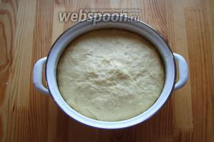Как подойдёт наше тесто, нужно обмять и опять отправить под плёнку в тёплое место.