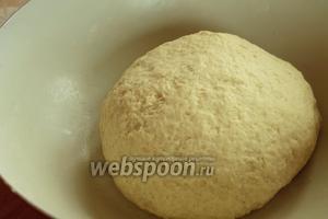 Замесить мягкое тесто. Если жидкости окажется недостаточно, можно подлить обычной тёплой воды. Оставить тесто в тёплом месте для подхода на 1 час.