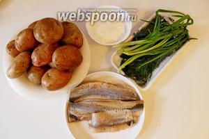 Приготовим ингредиенты. Я использовала филе сельди (в чистом весе 400 г), картофель не обязательно использовать молодой.