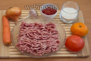 Итак, для приготовления вкусных тефтелек в нашем соусе, понадобятся следующие продукты: фарш, лук, морковь, чеснок, яйцо куриное, панировочные сухари, томатная паста, мандарин, помидор, мука и специи.