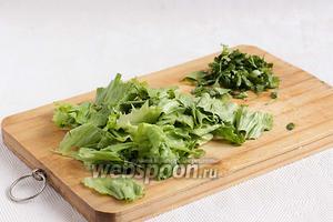 Листья салата порвать руками, зелень кинзы нарезать ножом.