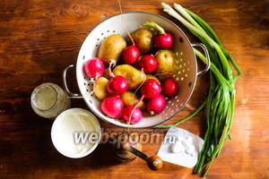 Для приготовления рецепта вам потребуется пучок свежего редиса, несколько пёрышек зелёного лука, молодой картофель, сметана, хрен со сливками, свежемолотый чёрный перец и соль.