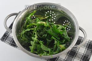 Молодые листья одуванчика и мелиссы промыть под проточной водой.
