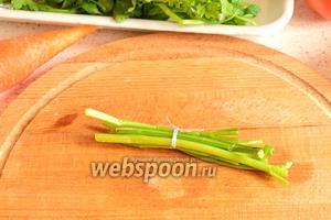 Можно отрезать стебли петрушки, перевязать их нитью и тоже бросить в бульон. Потом, в конце приготовления, нужно будет вынуть из борща эту связку.