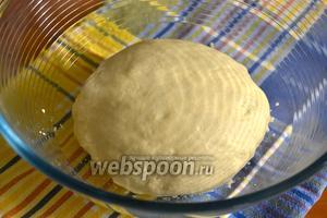 Переложить тесто в миску, накрыть кухонным полотенцем и оставить в тёплом спокойном месте на подъём на 1 час.