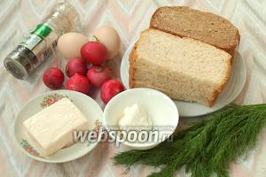 Для бутербродов нам понадобится хлеб белый или ржаной, можно пополам, редис, яйца, плавленый сырок, сметана, свежий укроп, соль и перец по вкусу.