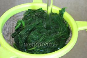 Сваренную крапиву опускаем в холодную воду или ставим под проточную для сохранения цвета.