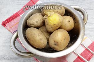Чистые картофельные клубни отварить в мундире традиционным способом, слив кипяток, остудить и снять кожицу.