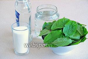 Для приготовления настойки нужно взять водку хорошего качества, воду (лучше родниковую), сахар-песок и листья черёмухи.