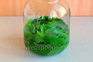 Залить листья сиропом с водкой.