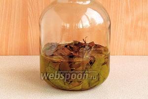 Настаивать в течение 10–14 дней. Когда исчезнет запах и привкус водки — настойка готова к применению.
