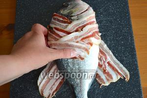 Сверху уложить дораду и завернуть её, чередуя полосочки бекона. «Укутать» таким образом всю рыбку.