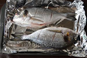 Посолить рыбку внутри и снаружи и выложить на противень, застеленный фольгой.
