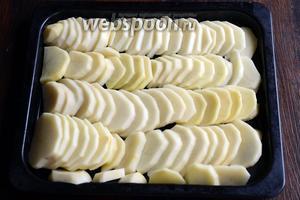 Подготавливаем все необходимые ингредиенты. Картофель нарезаем полукольцами и укладываем на противень.
