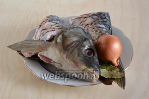 Для приготовления бульона возьмите свежайшую  выпотрошенную рыбу с головой и хвостом (у меня сазан), луковичку, перец горошком и лавровый лист.
