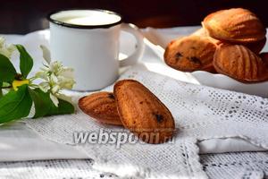 Печенье мадлен с чёрной смородиной
