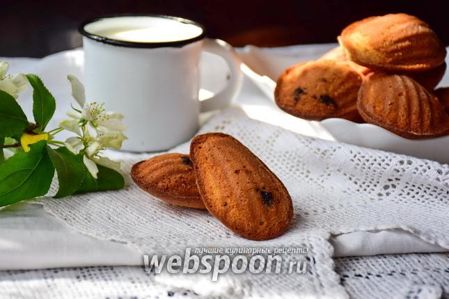Фото Печенье мадлен с чёрной смородиной