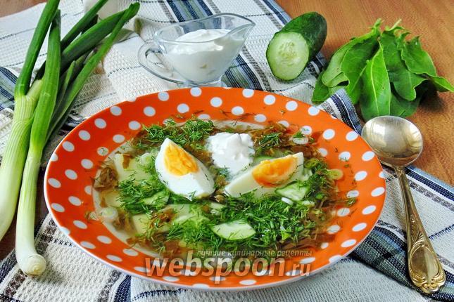 Фото Холодный суп из щавеля