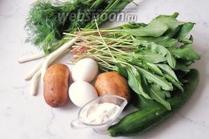 Для приготовления холодного супа из щавеля потребуется щавель, картофель, вода, яйца, огурцы, лук зелёный, зелень укропа или петрушки, соль.