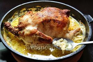 Подаём ароматного цыплёнка горячим, вместе с вкуснющим соусом.