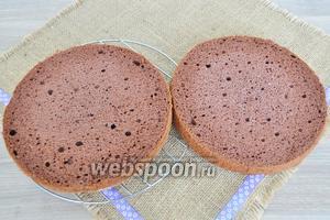 Бисквит  приготовим по рецепту  Польский шоколадный бисквит , выдержим его ночь и утром собираем торт. Разрежем бисквит на 2 части.